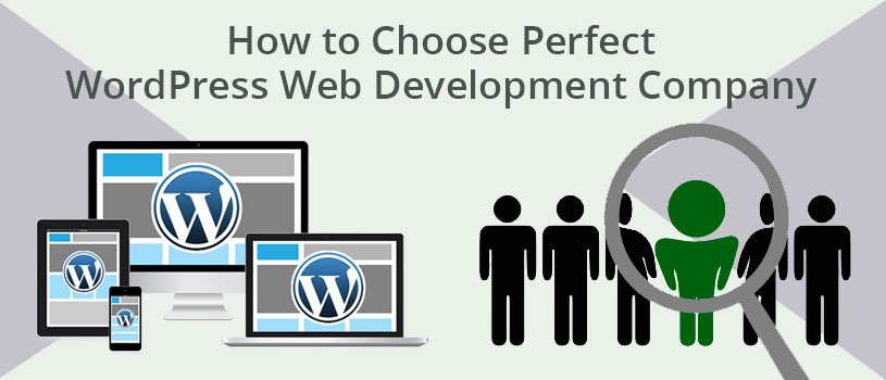 How to Choose Perfect WordPress Web Development Company