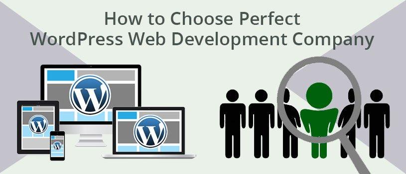 How to Choose Perfect WordPress Web Development Company