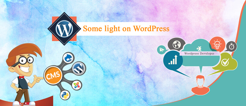 Identify the Right WordPress Developer