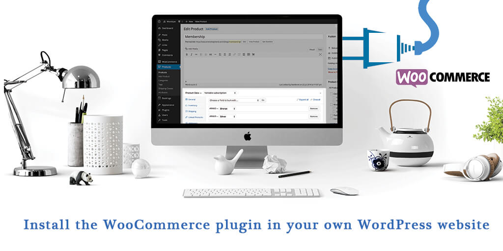 Install the WooCommerce plugin in your own WordPress website